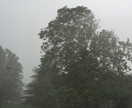 Avertizare meteo de vânt puternic în județul Brăila