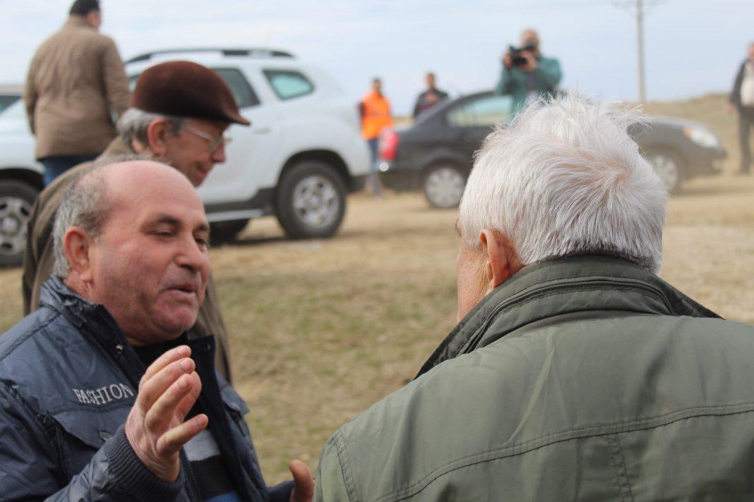 Daea: Cormoranii s-au înmulțit în ultimii 25 de ani de 24 de ori