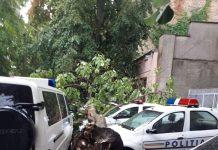 Furtuna a făcut ravagii în Brăila